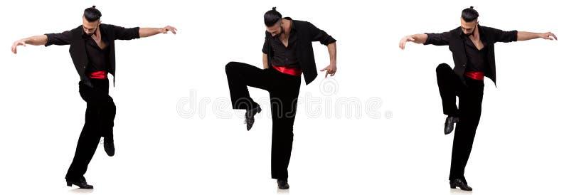 西班牙舞蹈家以在白色的各种各样的姿势 库存图片