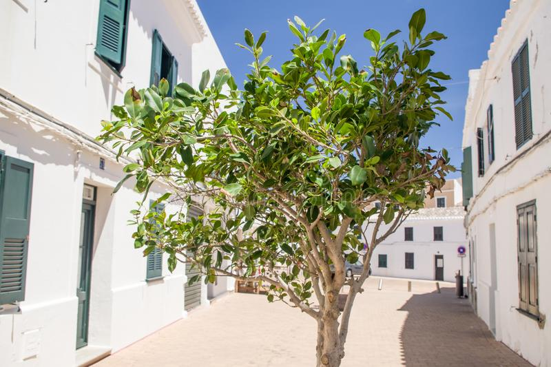 西班牙街道在Fornells, Menorca 图库摄影