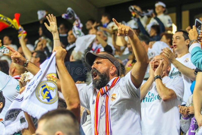 西班牙足球迷 库存照片