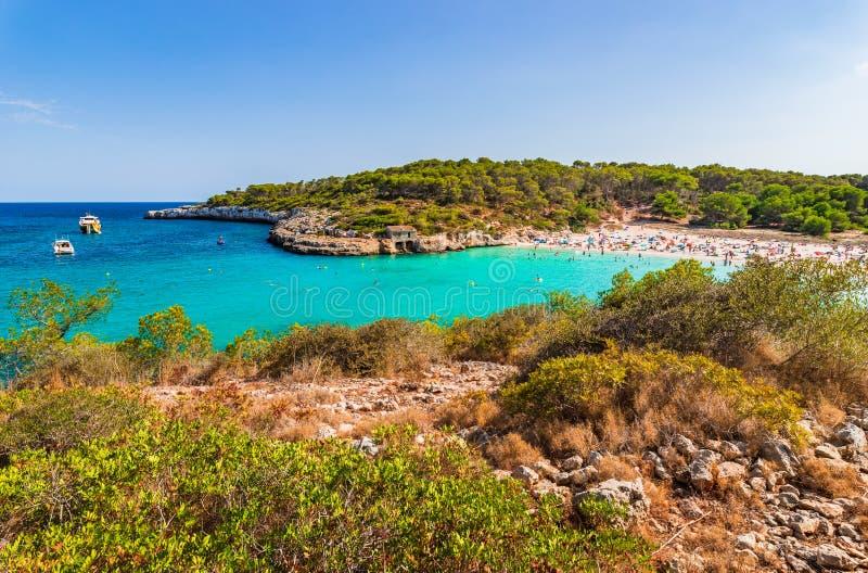 西班牙马略卡美丽的海滩S& x27; Amarador Cala Mondrago 库存图片