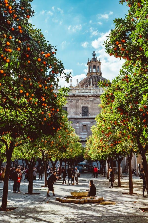 西班牙,安大路西亚,塞维利亚,从橙树庭院看见的大教堂钟楼 2019? 库存照片