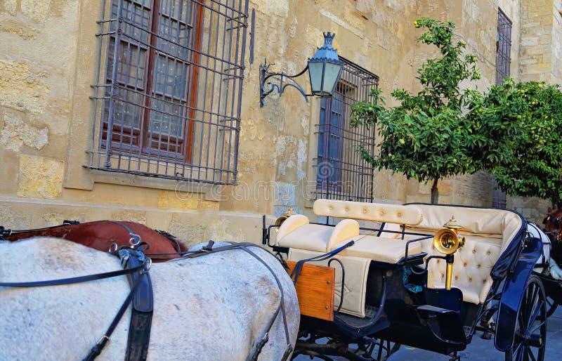 西班牙,马支架等待的游人临近古老大教堂 免版税库存图片