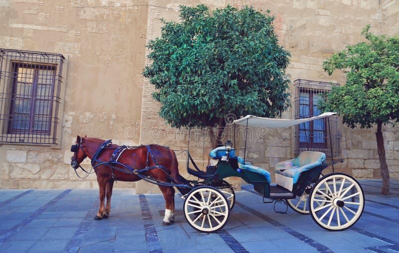 西班牙,马支架等待的游人临近古老大教堂 免版税图库摄影