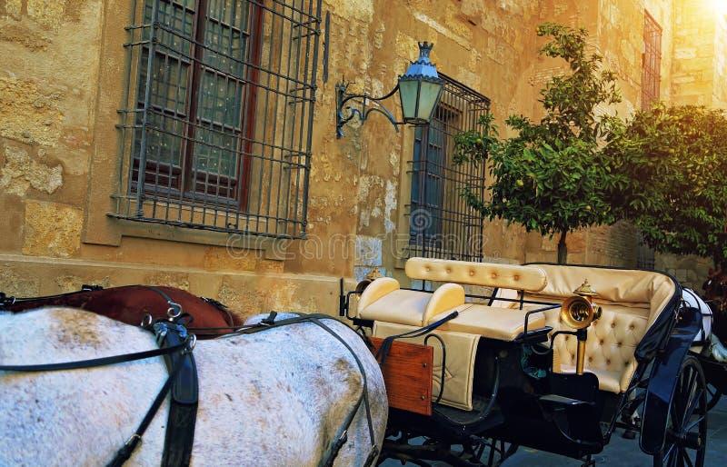 西班牙,马支架等待的游人临近古老大教堂 库存图片