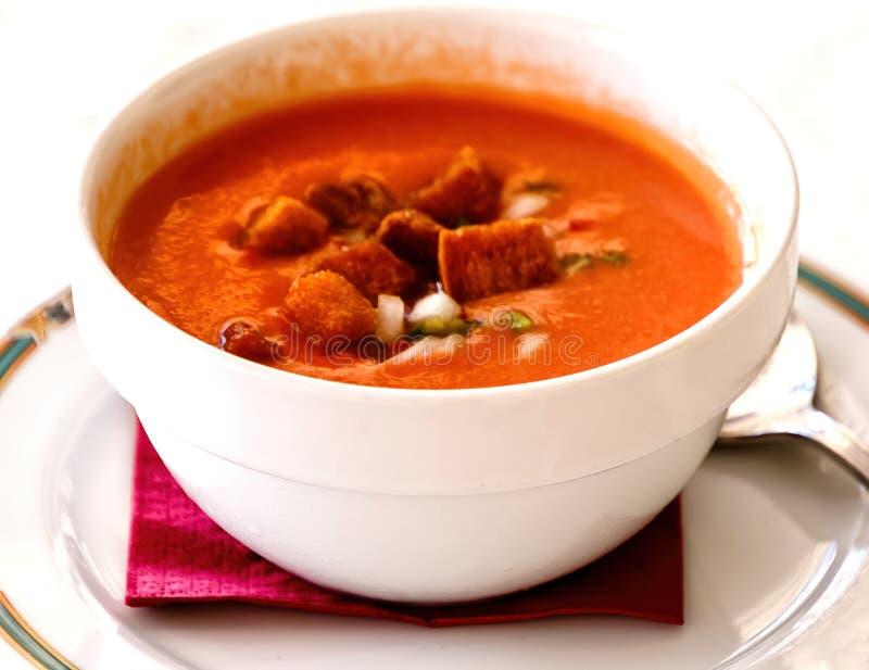 西班牙gazpacho使汤变冷做用成熟新鲜的蕃茄、黄瓜、甜椒、芹菜和葱 库存图片