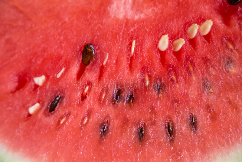 西瓜是甜果子 库存图片