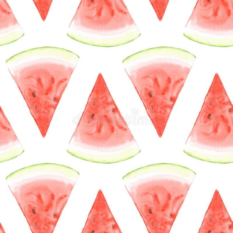 西瓜样式1 水彩 向量例证