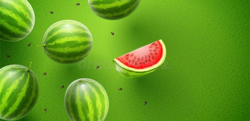 西瓜美好的果子味道横幅设计 库存例证