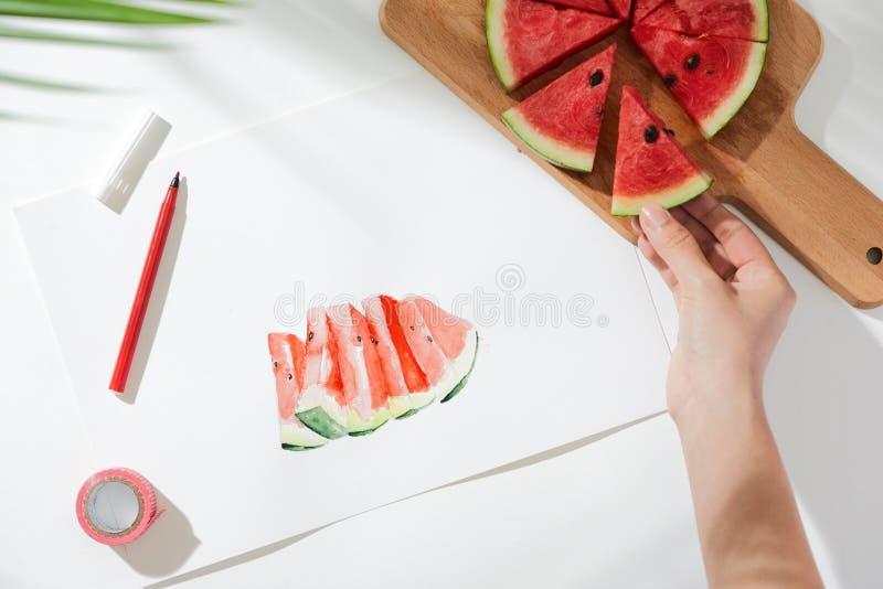 西瓜 热带夏天概念由西瓜果子和手图画例证制成 库存图片