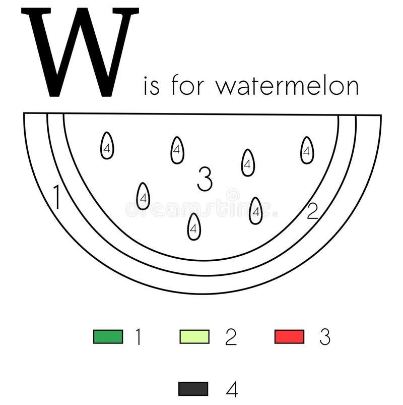 西瓜 矢量字母W,着色页 库存例证