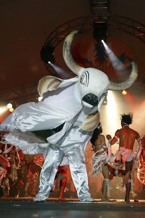 巴西节日民间传说parintins 免版税库存照片