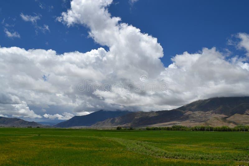 西藏天空 库存照片