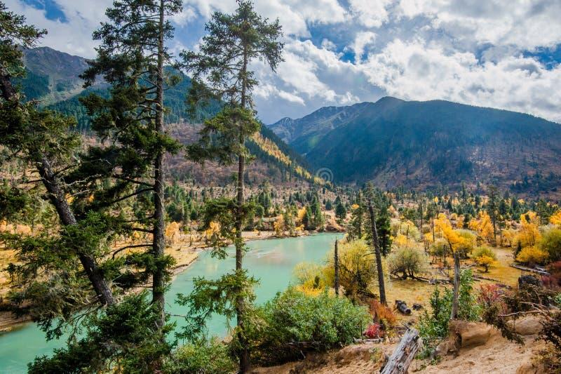 西藏的Xincuo湖 免版税库存照片