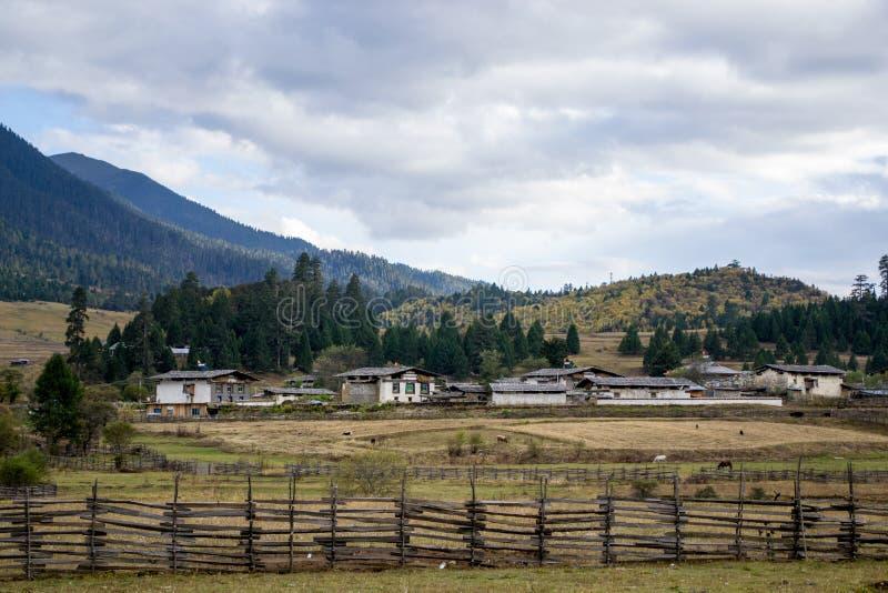西藏高原的农场 图库摄影