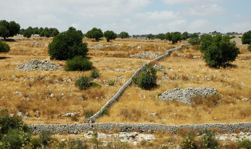 西西里人的landscape1 免版税库存照片