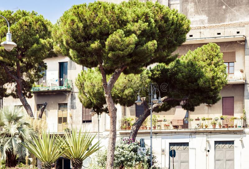 西西里岛的传统建筑学在意大利,卡塔尼亚典型的街道,老大厦门面与树胡同的 图库摄影