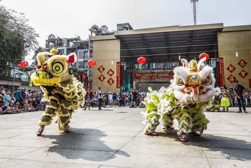 西贡,越南- 2015年2月18日:龙和舞狮在春节节日显示 库存图片