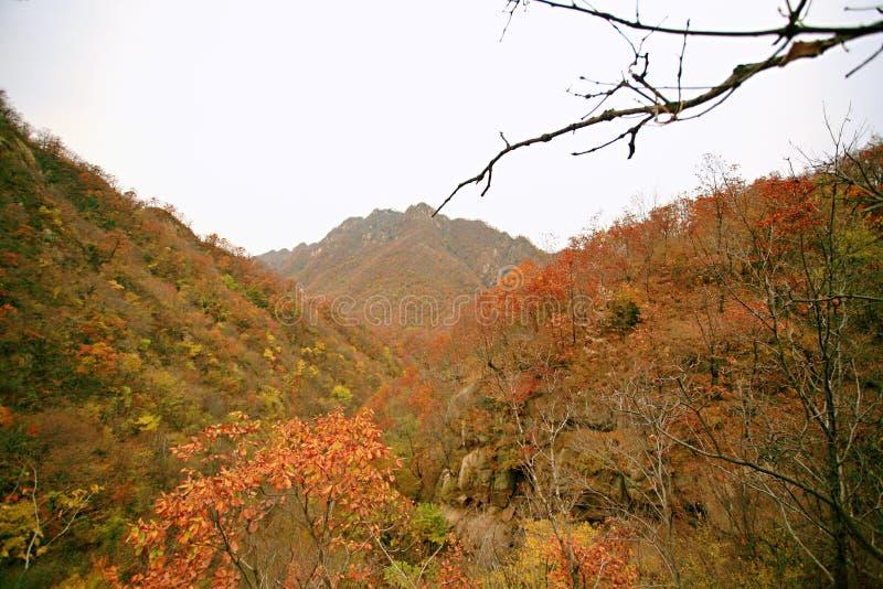 西部台山,汝阳 库存照片