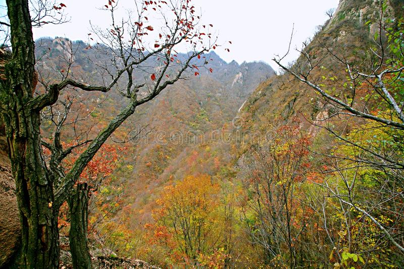 西部台山,汝阳 图库摄影