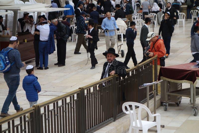 西部墙壁的正统犹太人在耶路撒冷 图库摄影