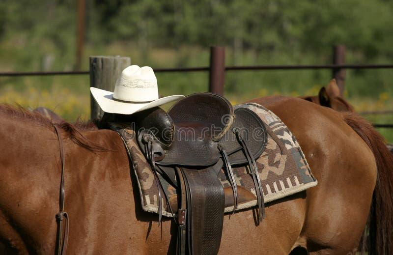 西部的马鞍 免版税库存照片