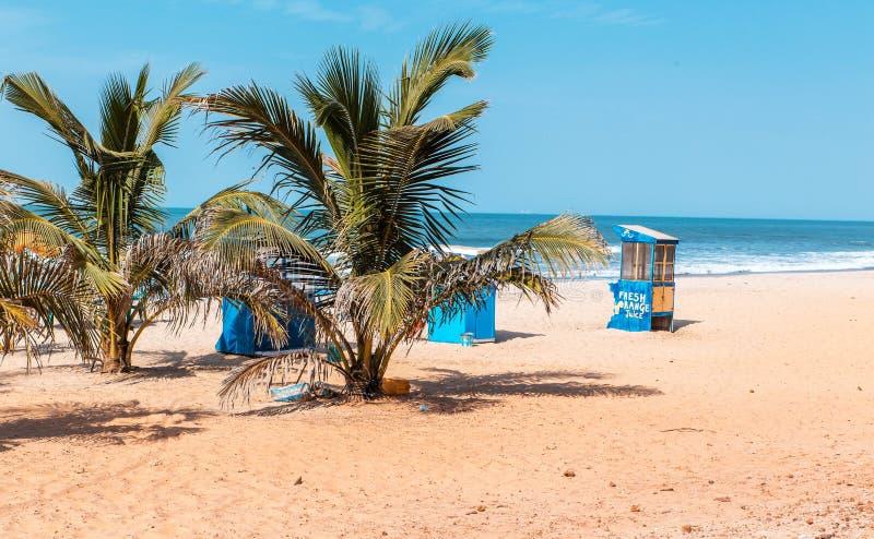 西非冈比亚-天堂海滩和棕榈树 免版税库存照片