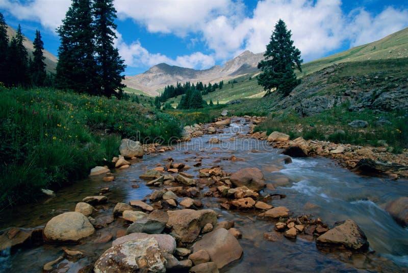 西马伦河小河 库存图片