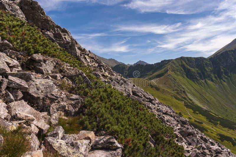 西Tatras的壮观的风景在夏天 图库摄影