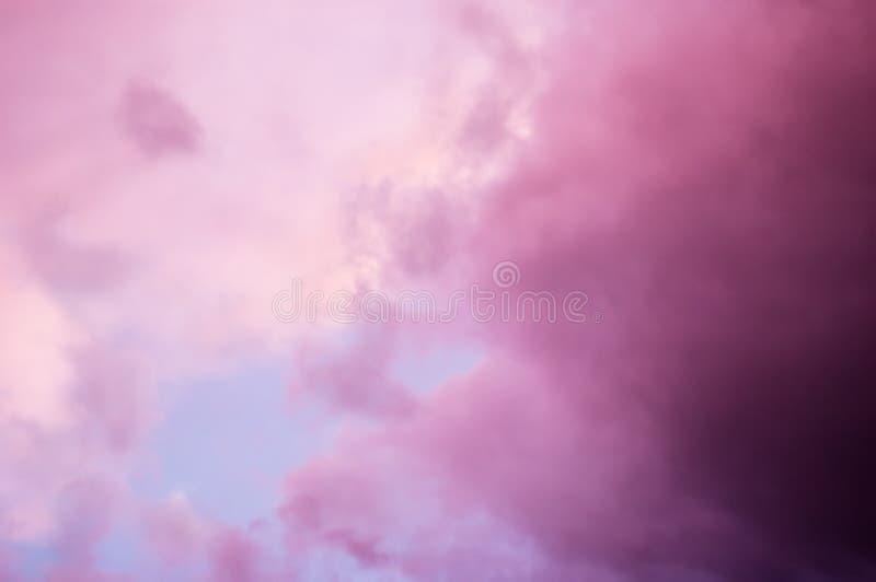 覆盖严重的粉红色 库存照片