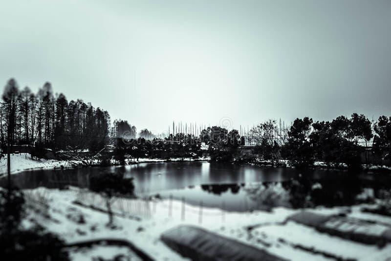 观光在湖附近的雪 库存照片