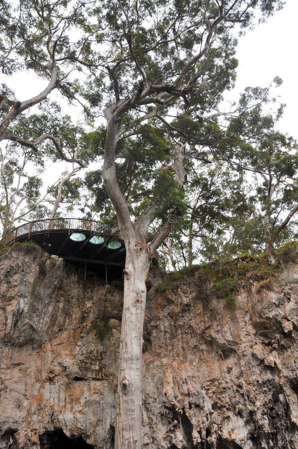观察平台:湖洞,西澳州 免版税图库摄影