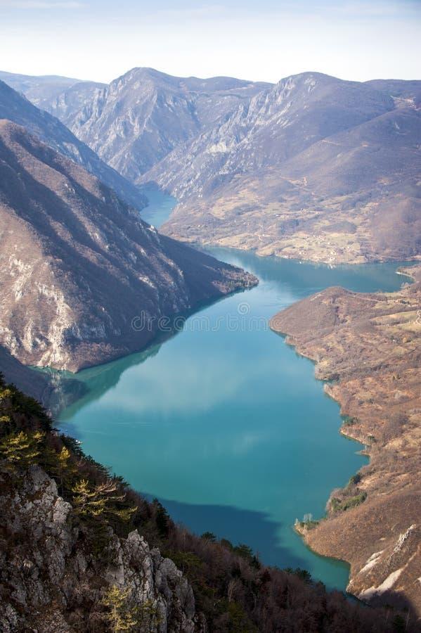 观点在看下来对德里纳河河,西部塞尔维亚峡谷的塔拉山的Banjska岩石  库存照片