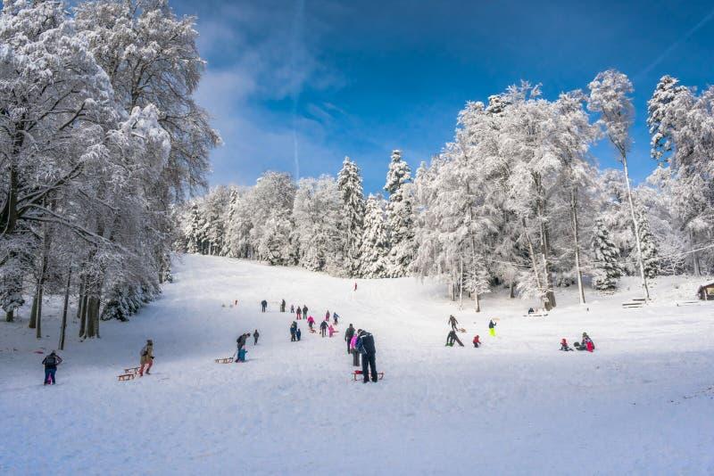 观点的人sledging和获得乐趣在雪,Medvednica山,萨格勒布在克罗地亚 免版税库存图片