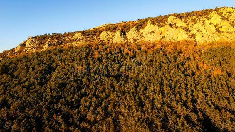 观点的在卢埃塔西班牙山的鸟  库存图片