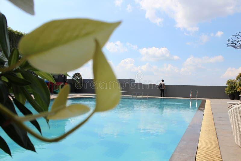 观点的屋顶的游泳场 免版税图库摄影