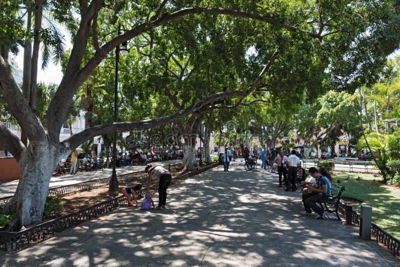 观点的广场重创的正方形或Plaza de la Independencia在梅里达,墨西哥 免版税库存照片