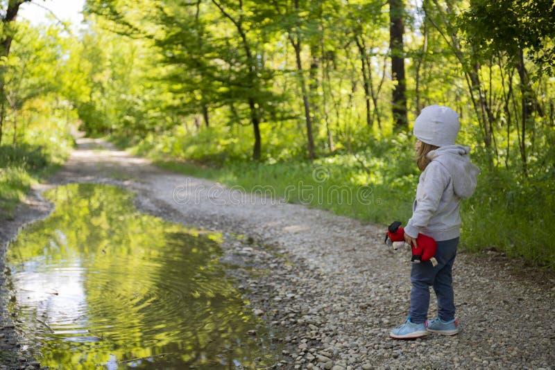 观看一个大水坑的小孩女孩 免版税图库摄影