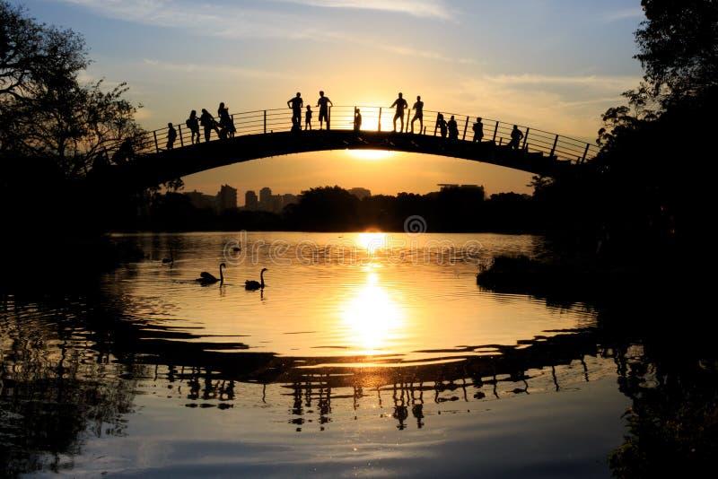 观看五颜六色的日落的人们由湖,伊比拉布埃拉公园,圣保罗,巴西 库存照片
