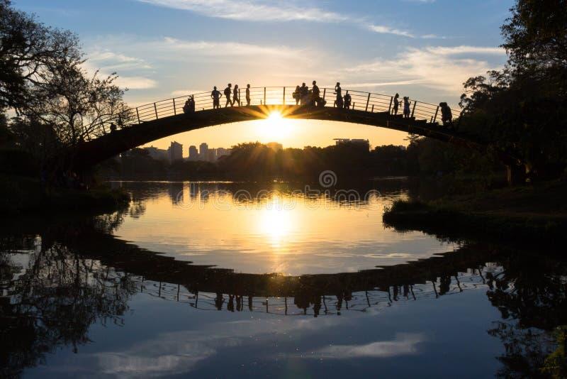 观看五颜六色的日落的人们由湖,伊比拉布埃拉公园,圣保罗,巴西 免版税库存照片
