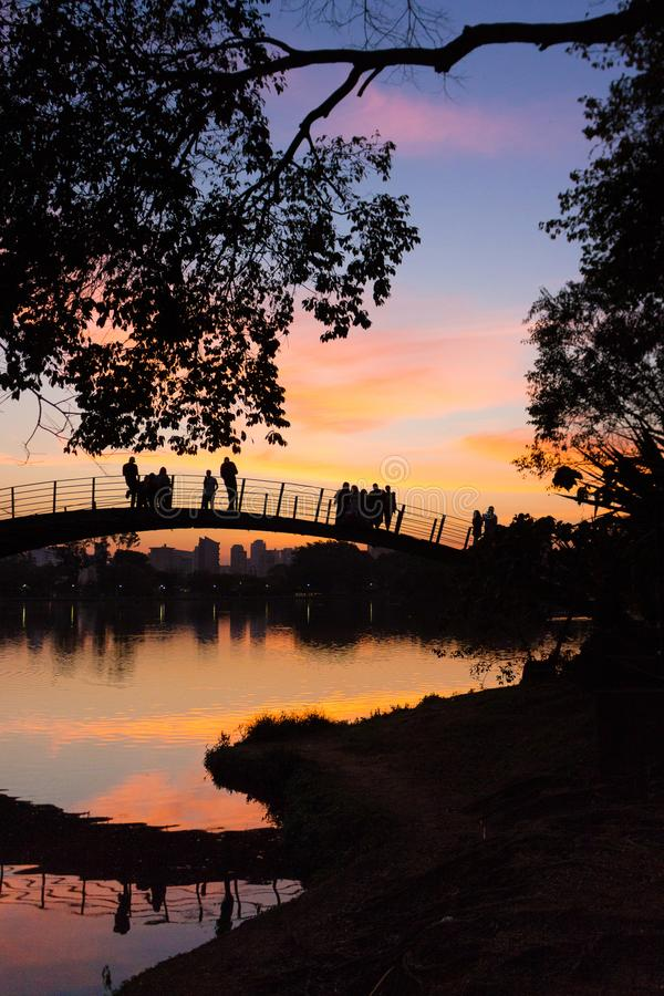 观看五颜六色的日落的人们由湖,伊比拉布埃拉公园,圣保罗,巴西 免版税库存图片