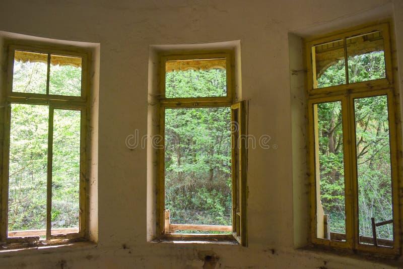 观看从被放弃的医院的内部的森林 免版税库存图片
