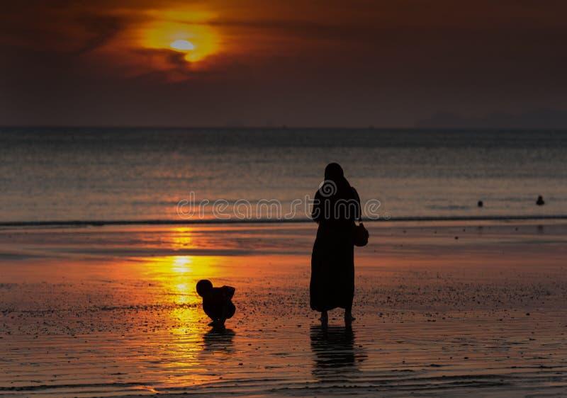 观看在海滩的日落 免版税库存图片