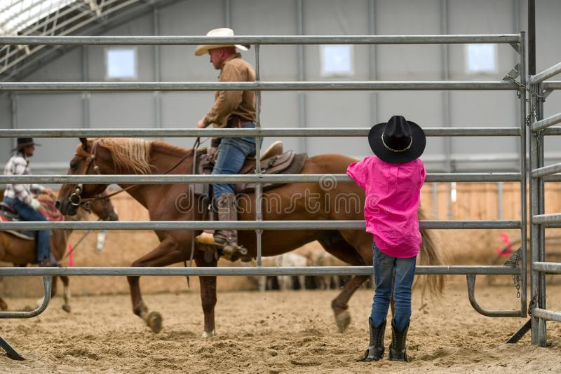 观看在竞技场的牛仔孩子 库存图片