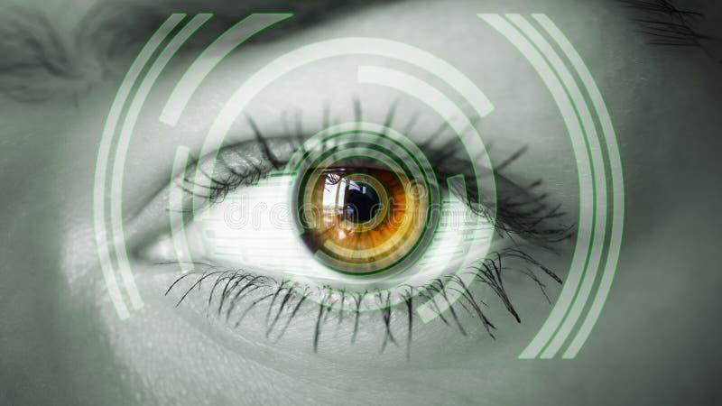 观看数字信息的眼睛 库存照片