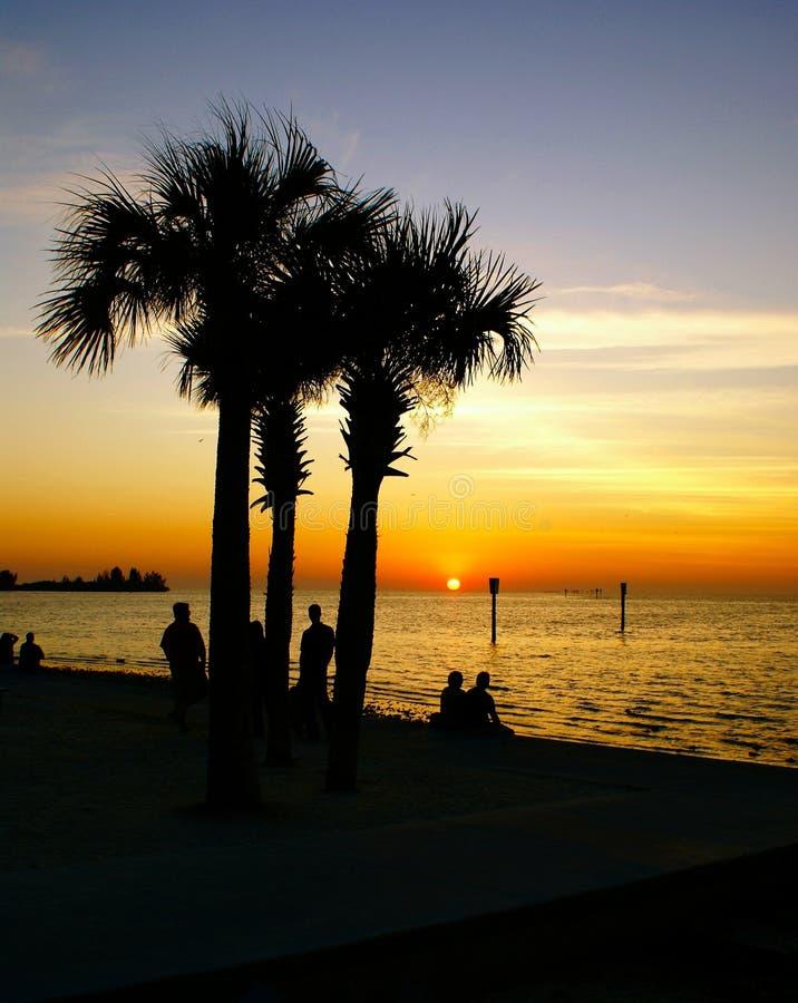 观看日落的人们在哈德森海滩佛罗里达 图库摄影