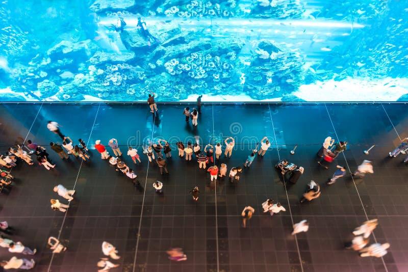观看在oceanarium的人们巨大的水族馆。 免版税库存照片