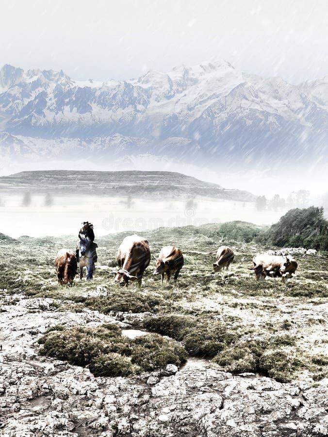 观看牧群的牛仔在冬天 向量例证
