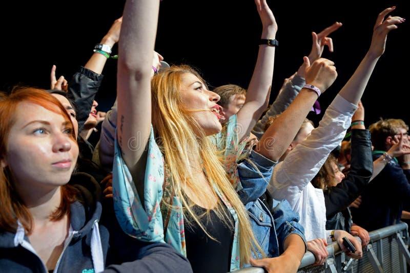从观看音乐会的第一行拥挤在海涅肯Primavera声音 库存照片