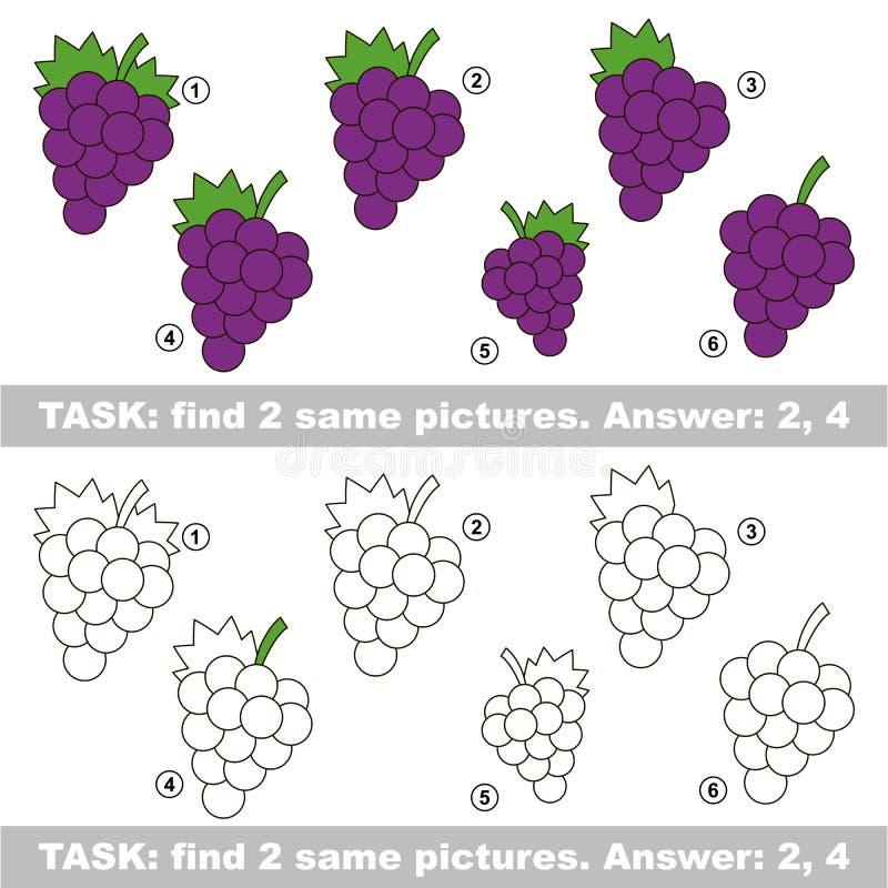 视觉比赛 发现葡萄暗藏的夫妇  库存例证