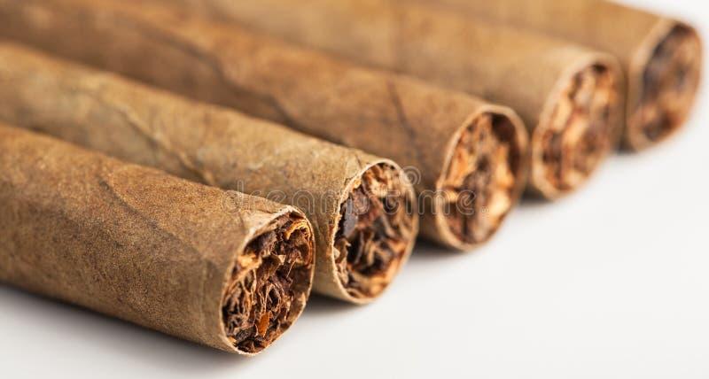 从角度的五雪茄 库存图片